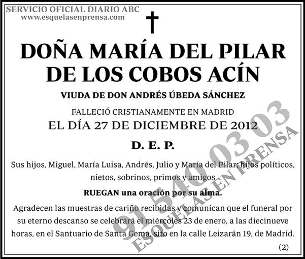María del Pilar de los Cobos Acín